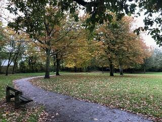 A picture of trees in Woodlands Park in the autumn.