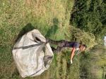 Longmarsh green hay cut